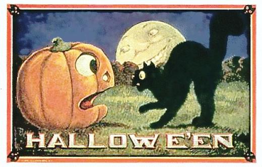 jack o lantern and cat