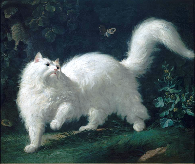 white cat paintng