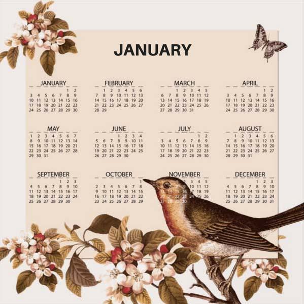 JANUARY crazy calendar
