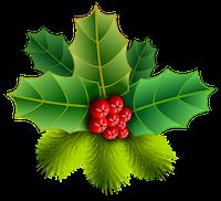 christmas-2535593__480