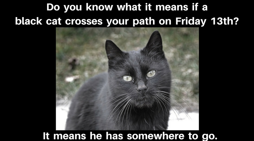Do you know what it means if a black cat crosses your path on Friday 13th