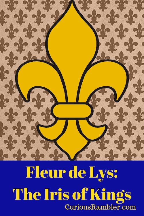 Fleur de Lys_The Iris of Kings
